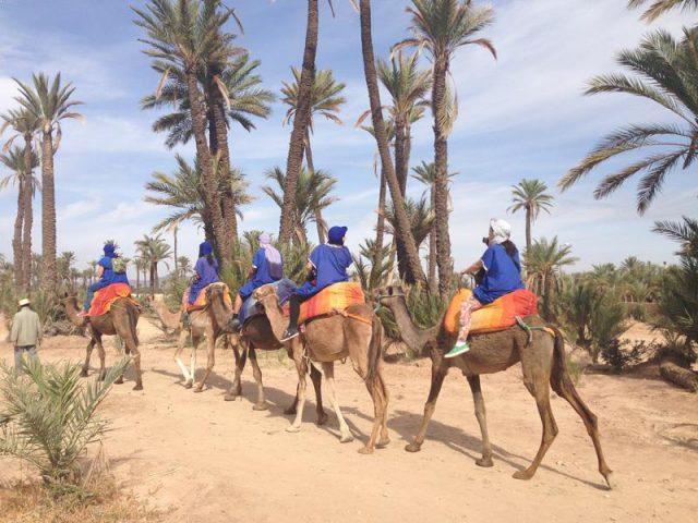 Camel-ride-Marrakech-Morocco-Camel-Trekking