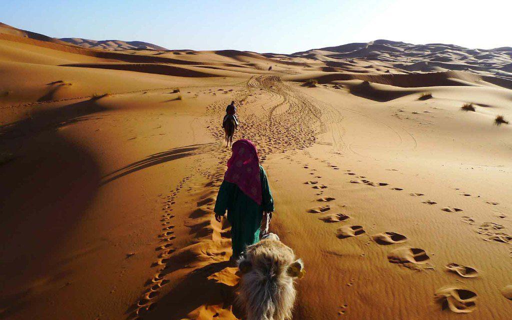 https://www.moroccodailytours.com/wp-content/uploads/2018/11/camel-ride-18-1024x640.jpg
